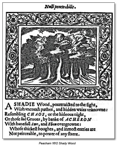 A Shadie Wood - Nulli penetrabilis